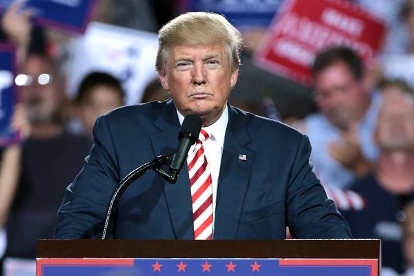 Il monarca Trump e l'organizzazione gerarchica in azienda